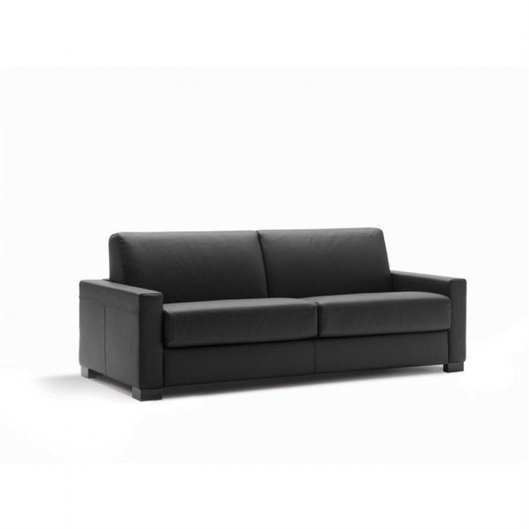 Photos canap 2 places cuir convertible - Canape convertible 2 places cuir ...
