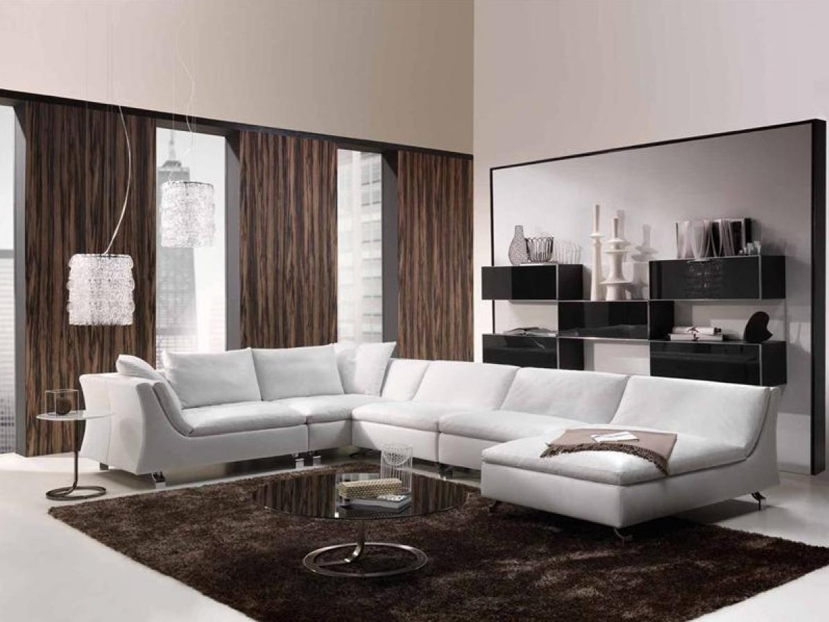 Photos canap natuzzi for Canape habitat