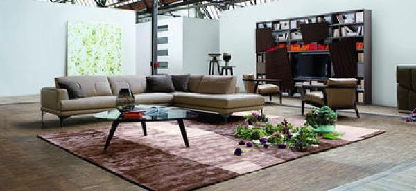 Photos canap modulable cuir contemporain roche bobois for Canapes roche bobois soldes